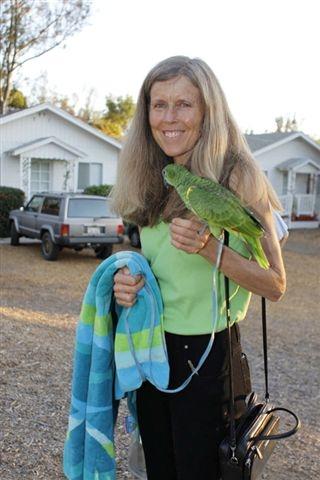 music-parrot